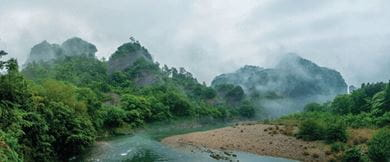 The Wuyi mountains are famous for producing premium quality tea
