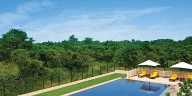 The Oberoi Sukhvilas is surrounded by over 8,000 acres of the Siswan forest range