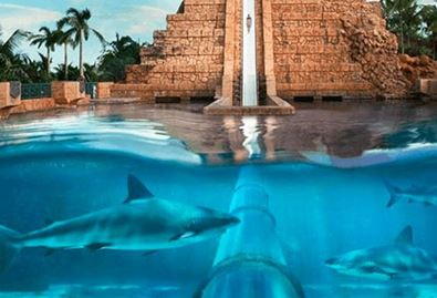 Aquaventure Waterpark Experience, The Oberoi Dubai