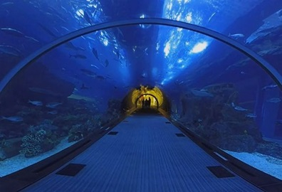 Lost Chambers Aquarium Visit Experience, The Oberoi Dubai