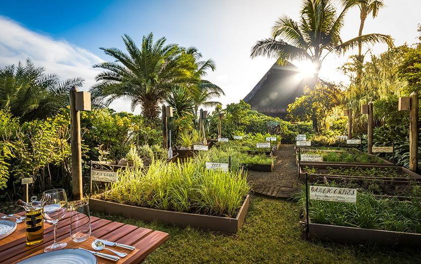5 Star Hotels in Mauritius   The Oberoi Beach Resort Mauritius