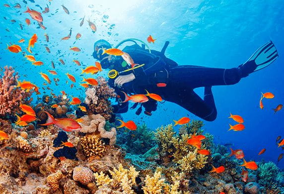 Scuba Diving Experience at The Oberoi Beach Resort Mauritius