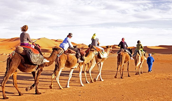 Horse or Camel Ride at The Oberoi Beach Resort Sahl Hasheesh