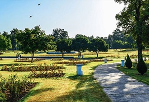 Chandigarh Gardens Tour at The Oberoi Sukhvilas Spa Resort Chandigarh
