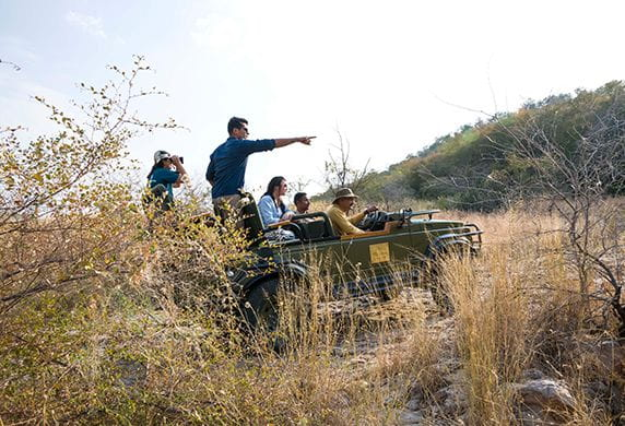 Jungle Drive Experience at The Oberoi Vanyavilas Ranthambhore