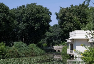 Trail of Wellbeing Experience at The Oberoi Vanyavilas Ranthambhore