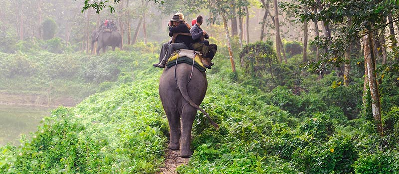 Elephant Safari at The Oberoi, Bali
