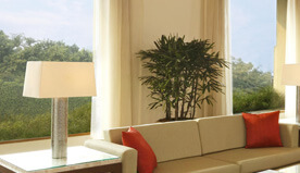Lush Green Garden Views From The Luxury Suites at The Oberoi, Gurgaon
