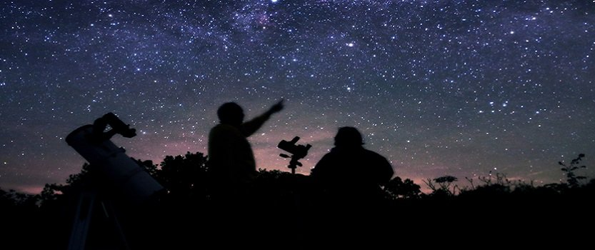 Star Gazing in Ranthambhore