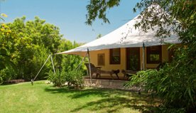 Luxury of Nature - Luxury Tents are Located By The Jungle - The Oberoi Vanyavilas, Ranthambhore