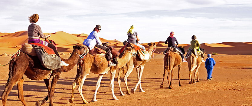 Horse or Camel Ride