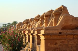 Luxor - Cruise Highlights - The Oberoi Zahra, Luxury Nile Cruiser
