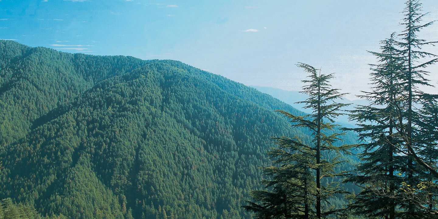 Himalayan Vacations - Special Offers at The Oberoi Cecil & Wildflower Hall